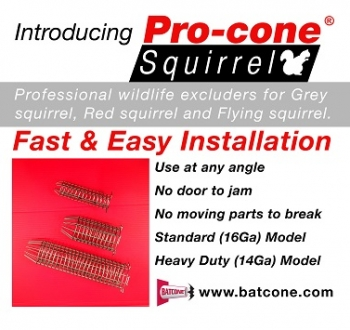 Pro Cone Squirrel Removal